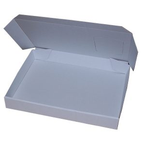 395mm x 320mm x 50 mm (Code D10 Pack of 20)