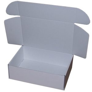 310mm x 220mm x 100mm (Code PL2 Pack of 20)